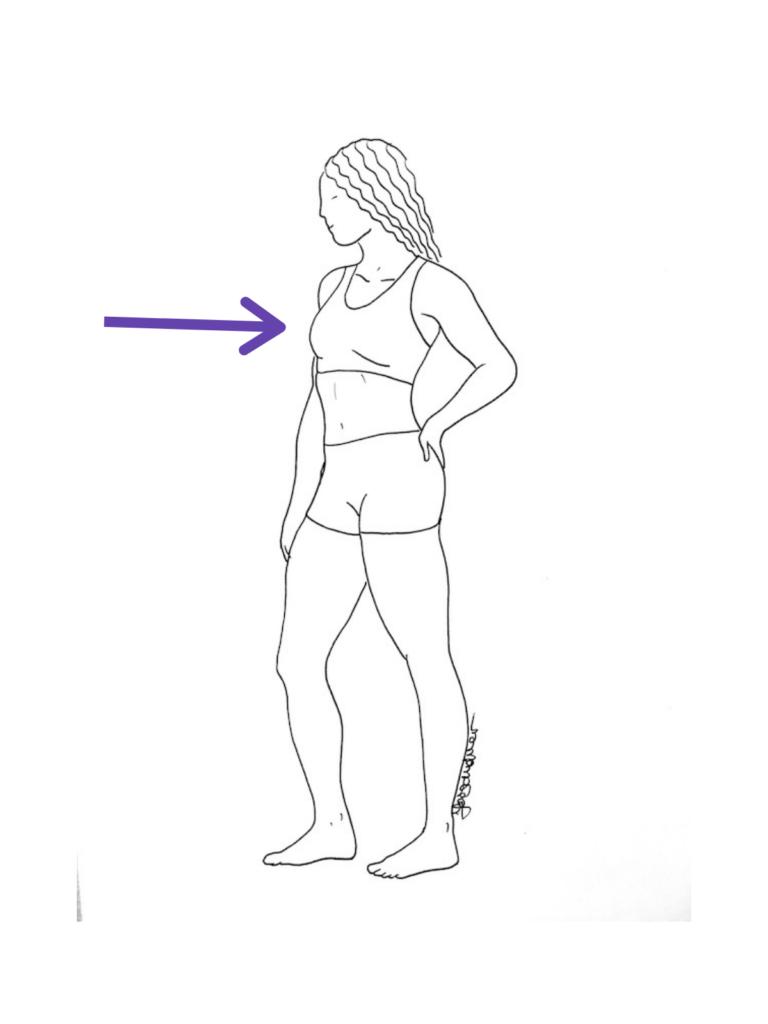 Brystkassen i metasundhed