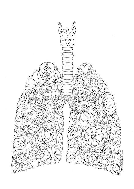 Lunger i metasundhed